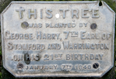 plaque for birthday tree