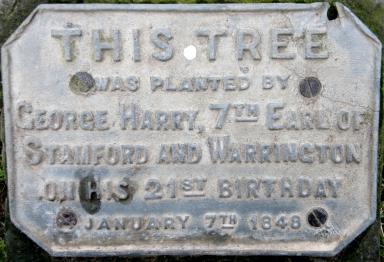 plaque for birthdaytree