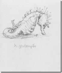 seahorse blog